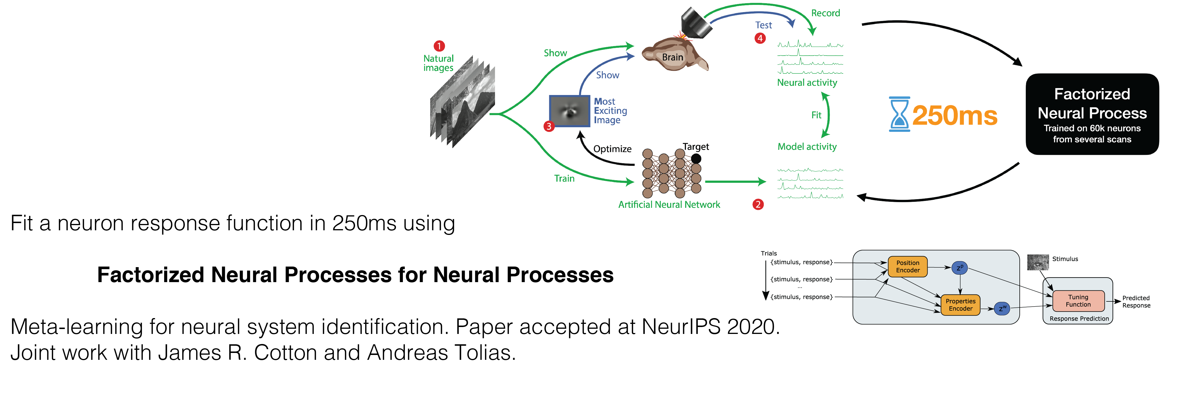 Paper accepted at NeurIPS 2020